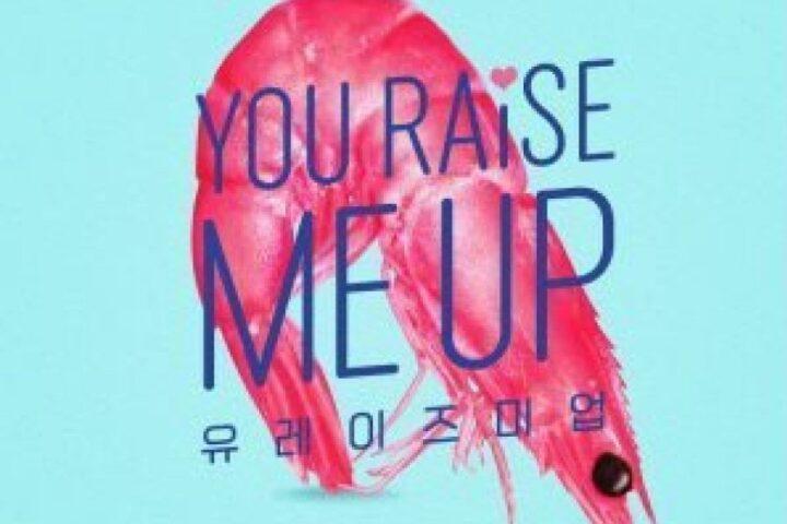 Drama Korea You Raise Me Up Sub Indo Episode 1 - 8(END)